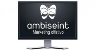 Ambiseint, la empresa ibicenca que quiere alcanzar las 80 franquicias y llegar a todos los hogares y negocios españoles