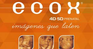 ECOX 21-7-17 elche
